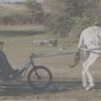 Le randoline est une calèche accessible aux personnes à mobilité réduite qui peut-être tiré par un âne ou un petit cheval.